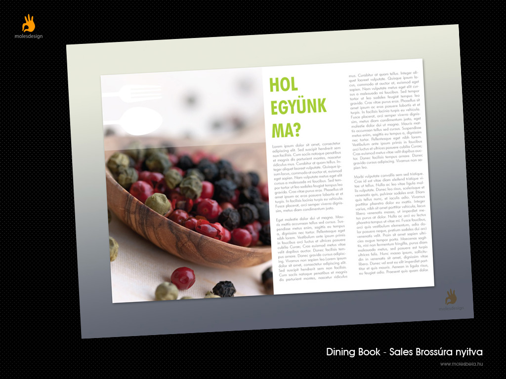 Dining Book - sales brossúra