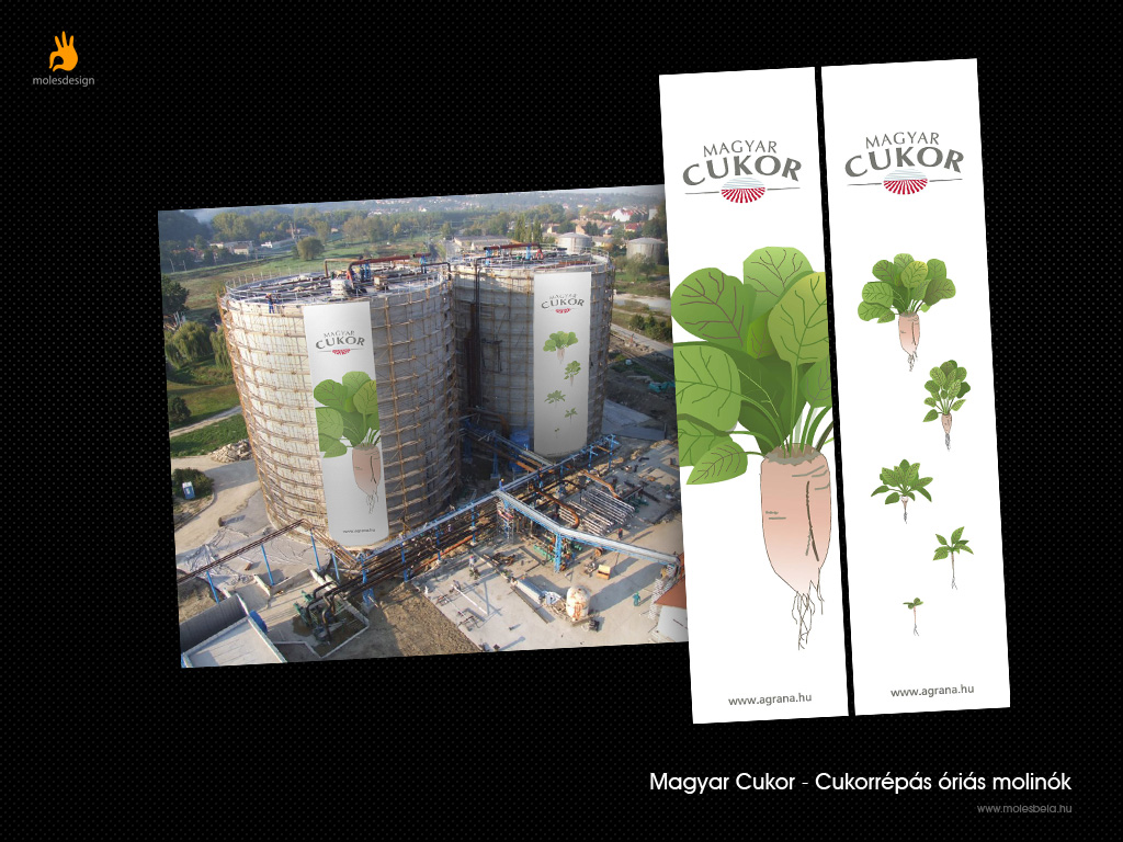 Magyar Cukor - molinó terv